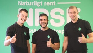 Nat_rent_svanen[1]