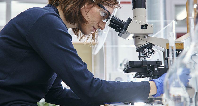 Nyanlända forskare påbörjar snabbspår till universitetet