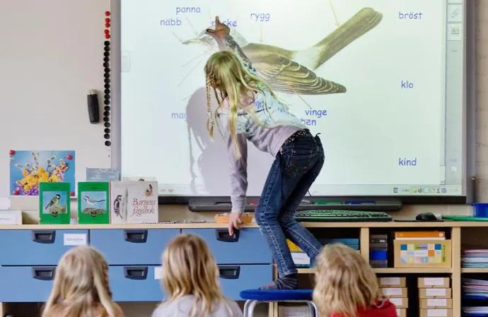 Ny lärarutbildning med kombinerad anställning i Helsingborgs stads skolor