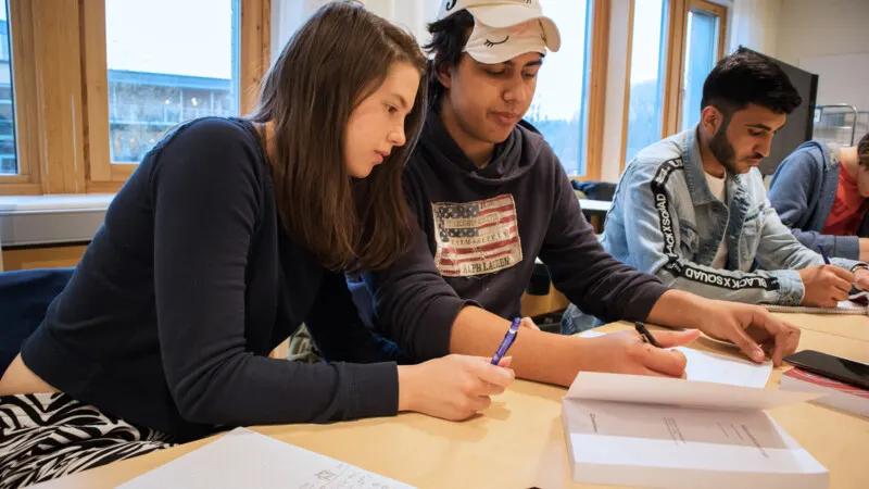 Elever har liten möjlighet att jobba med matematiska problem