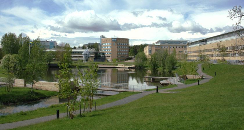 Umeå universitet först i landet med kandidatexamen i polisiärt arbete