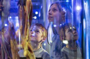 Vad är framtidens människa? Tekniska undersöker människans relation till tekniken i ny utställning 3