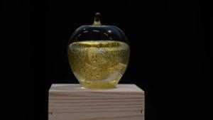 Lärarstjärnor med digital kompetens nominerade till lärarpriset Guldäpplet 2020 1