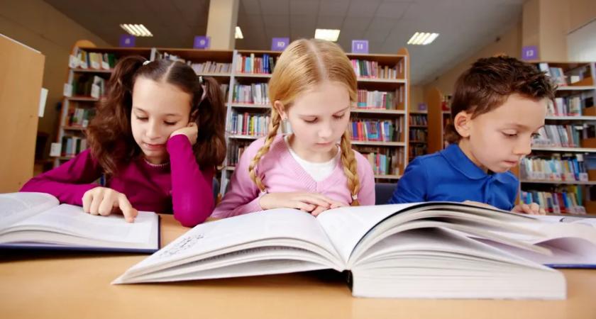 Nu kommer 50 skolor i Norrköpings kommun att ha ett nytt användarvänligt bibliotekssystem