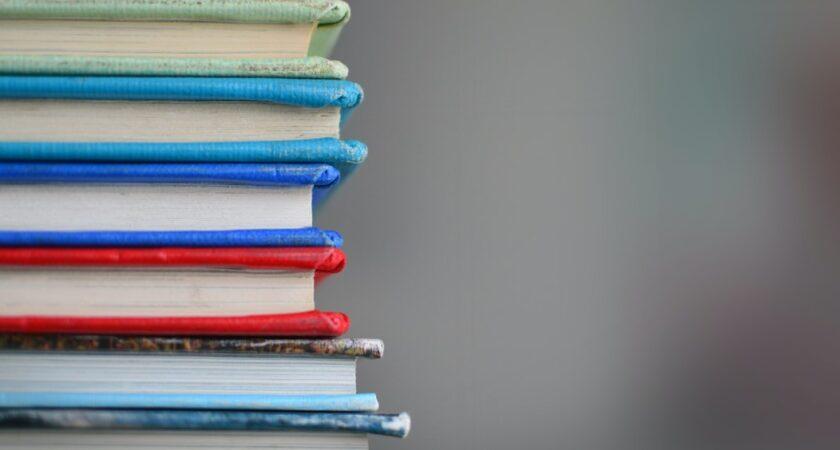 AcadeMedias grundskolesegment förtydligar det pedagogiska utbudet och lanserar nya utbildningsprofiler