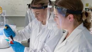 Gula bananflugor kopplar Högskolan till årets nobelpris i kemi 1