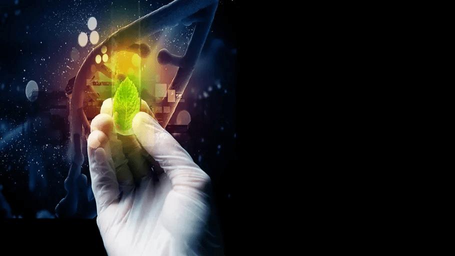 Bioteknik på KTH efter gymnasiet?