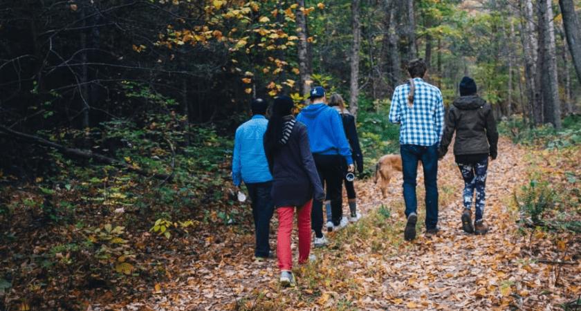 Digital undervisning en framgång när asylsökande lär sig svenska